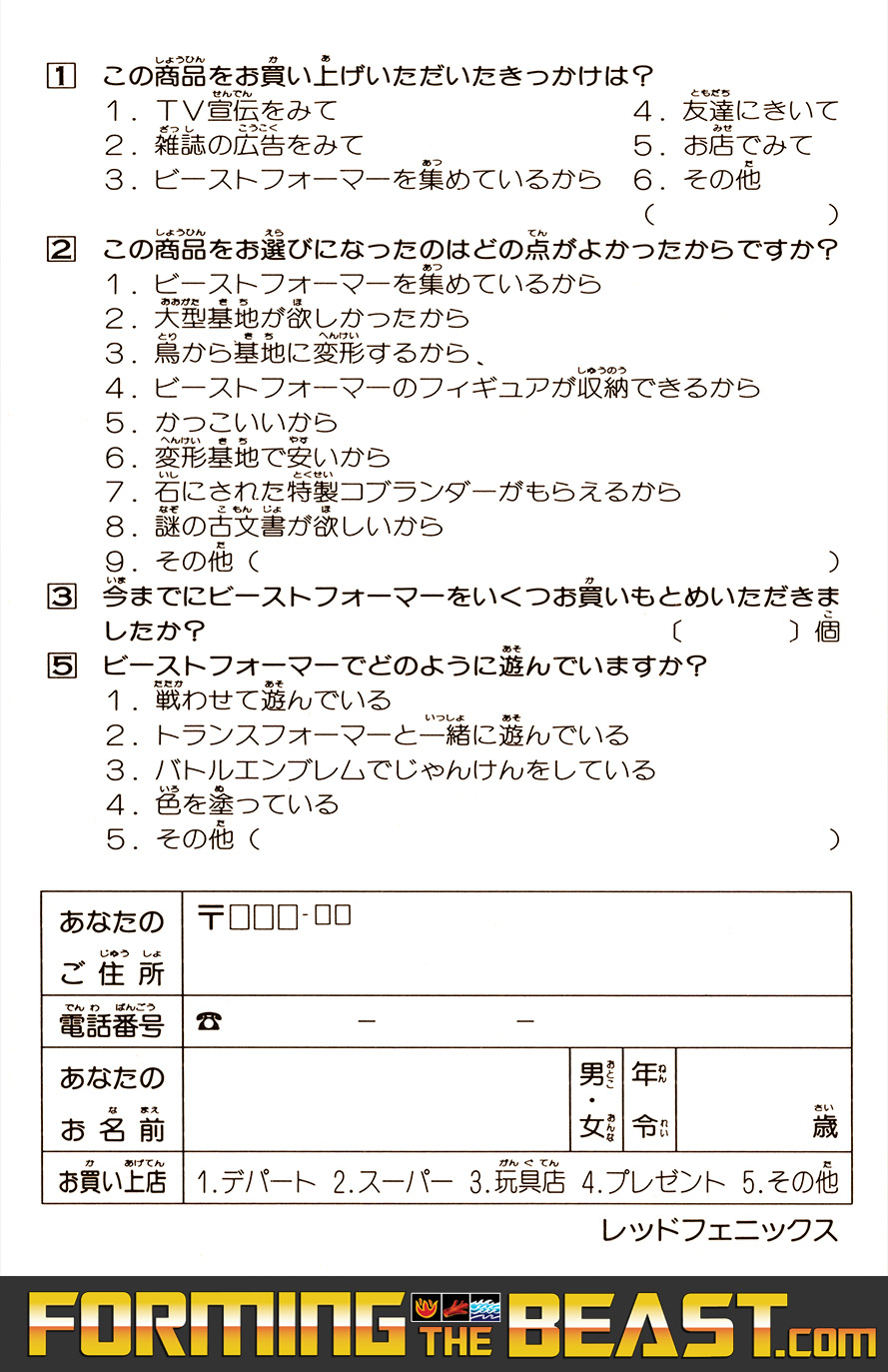 Scan of the Stone Cobra Mail-Away Questionnaire - Red Phoenix Version | Back